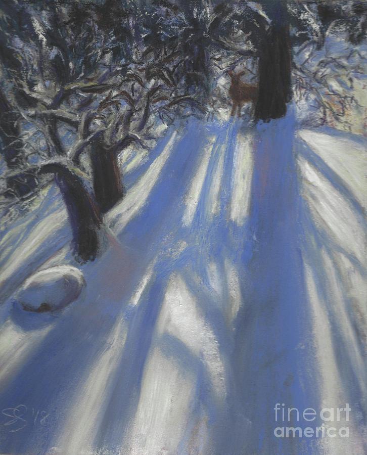 Snow Shadows by Susan Sarabasha