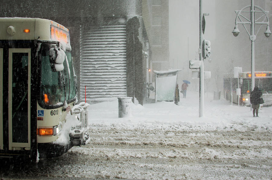 snow storm bus stop by Stephen Holst