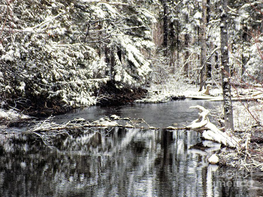 Winter Photograph - Snow Stream by William Tasker