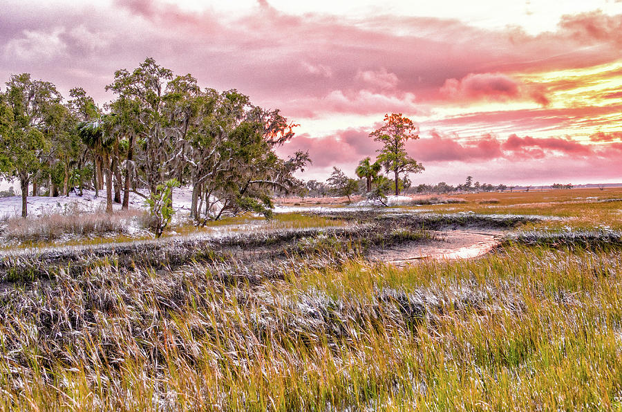 Snow Sunset -Marsh View by Scott Hansen