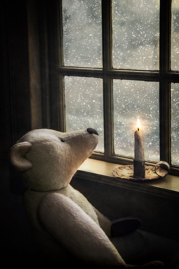 Snow Wonder by Robin-Lee Vieira