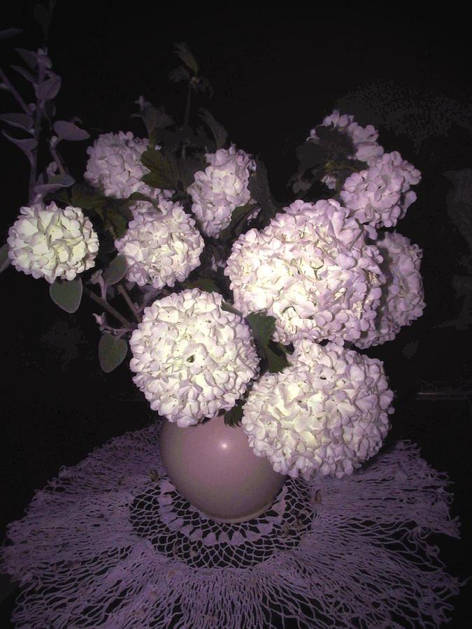 Snowball Photograph - Snowball Bouquet by Joyce Dickens