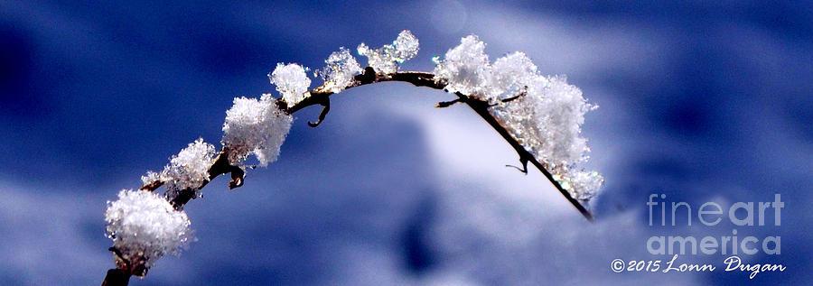 Snow Photograph - Snowbridge #5 by EGiclee Digital Prints