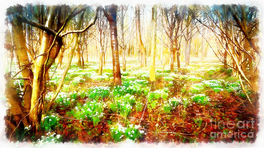 Snowdrops in the forest by Mick Flynn