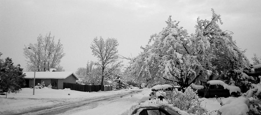 Snow Photograph - Snowed In by Jera Sky