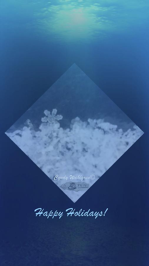 Snowflakes Photograph - Snowflake Jewel by Cyndy Wahlgren