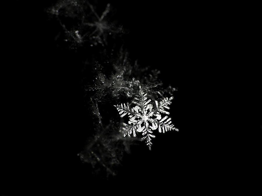 Horizontal Photograph - Snowflake by Mark Watson (kalimistuk)