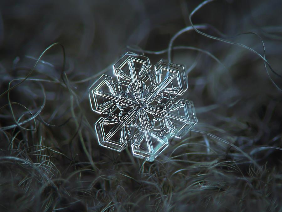 Snowflake photo - Alcor by Alexey Kljatov