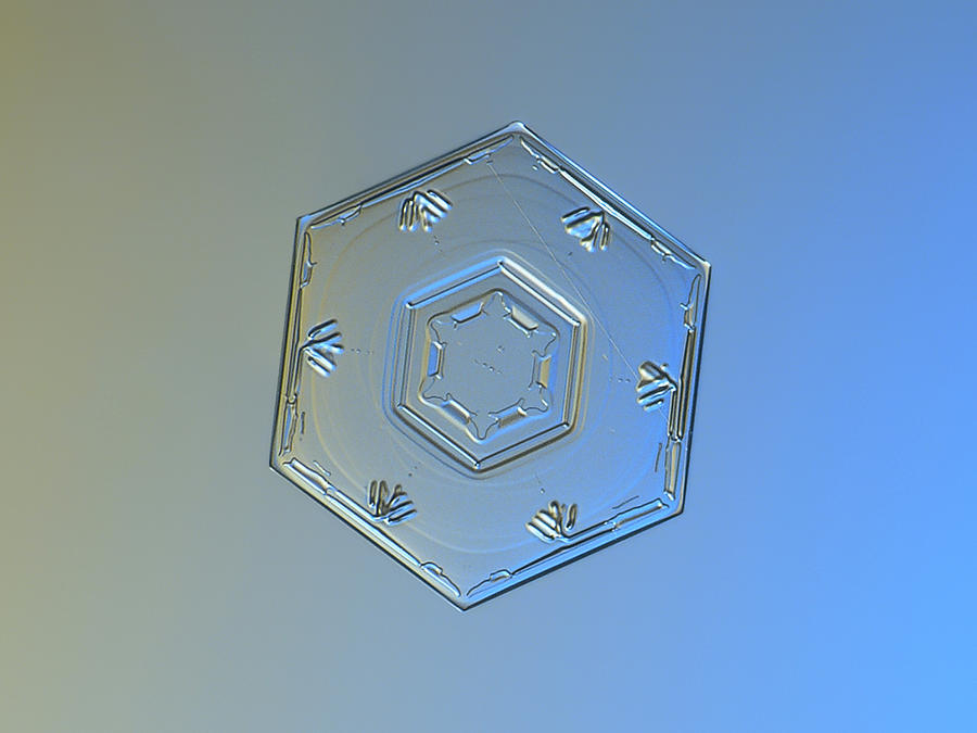 Snowflake Photograph - Snowflake Photo - Cryogenia by Alexey Kljatov