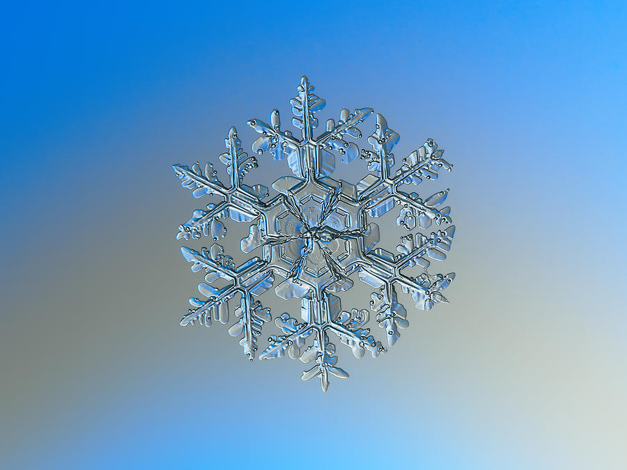 Snowflake Photograph - Snowflake Photo - Gardeners Dream by Alexey Kljatov