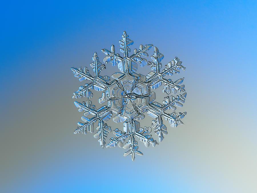 Snowflake photo - Gardener's dream by Alexey Kljatov