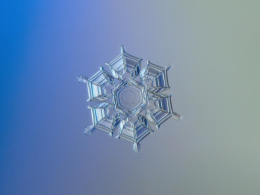 Snowflake Photograph - Snowflake Photo - Ice Relief by Alexey Kljatov