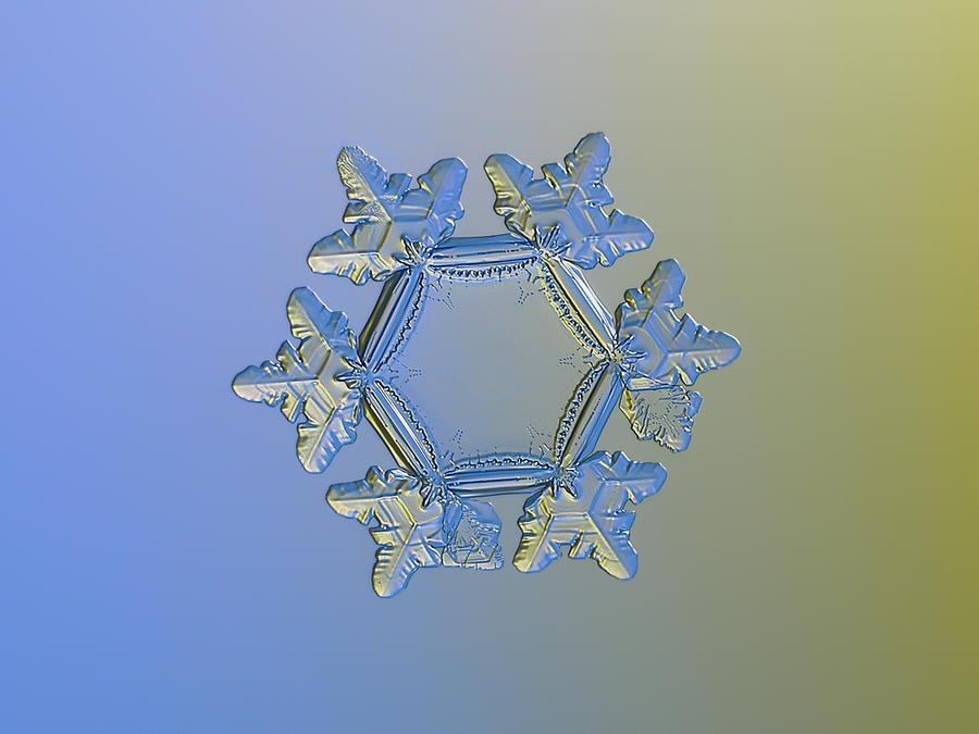 Snowflake Photograph - Snowflake Photo - Sunflower, Golden Version by Alexey Kljatov