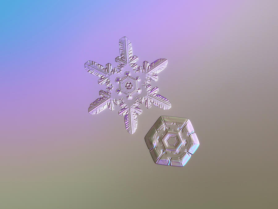 Day Photograph - Snowflake Photo - Two Hearts by Alexey Kljatov