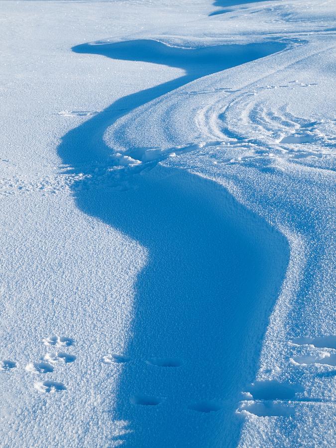 Snowforms 4 Photograph