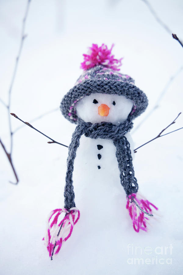 Snowman Photograph - Snowman by Kati Finell