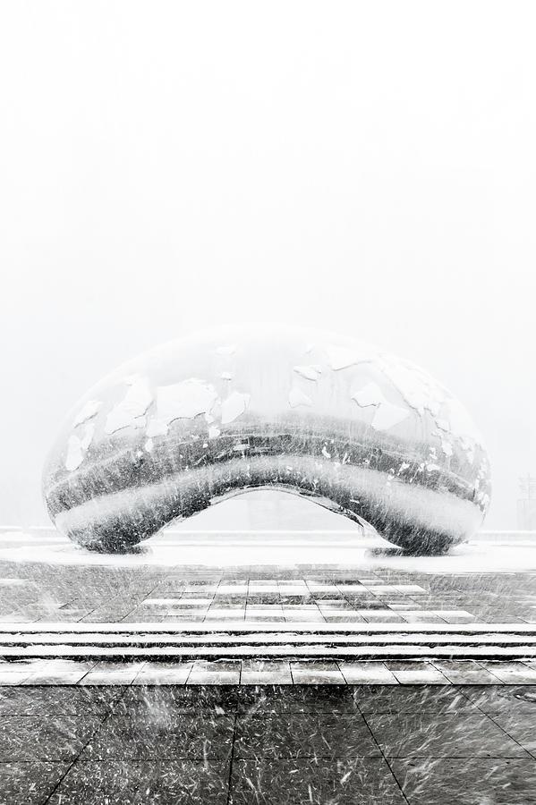 Snowy Bean by Sebastian Musial