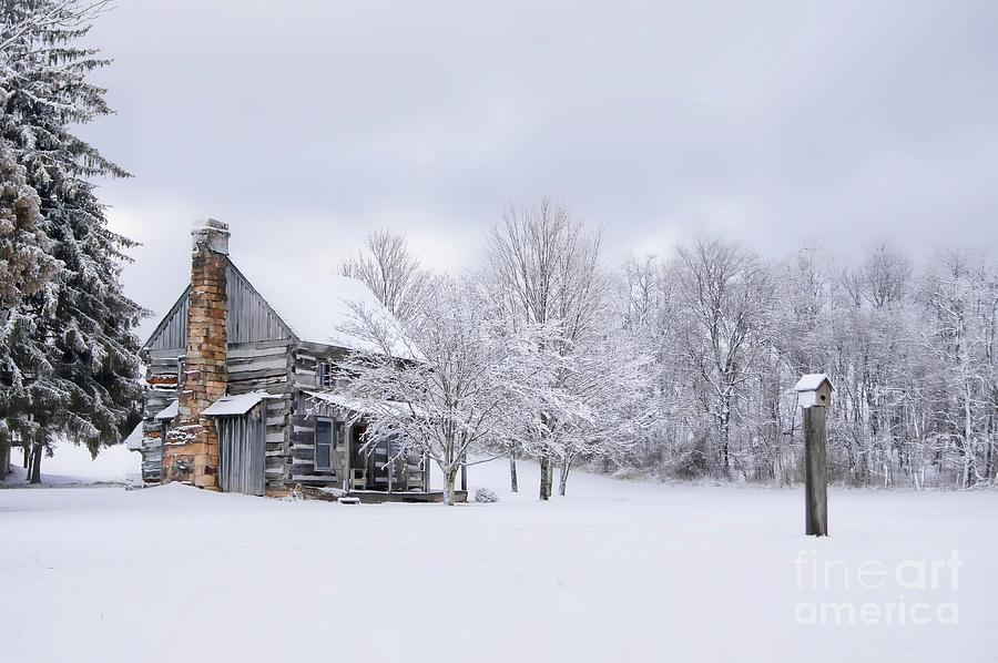 Snowy Cabin by Benanne Stiens