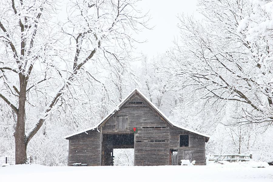 Snowy Christmas Barn by Benanne Stiens