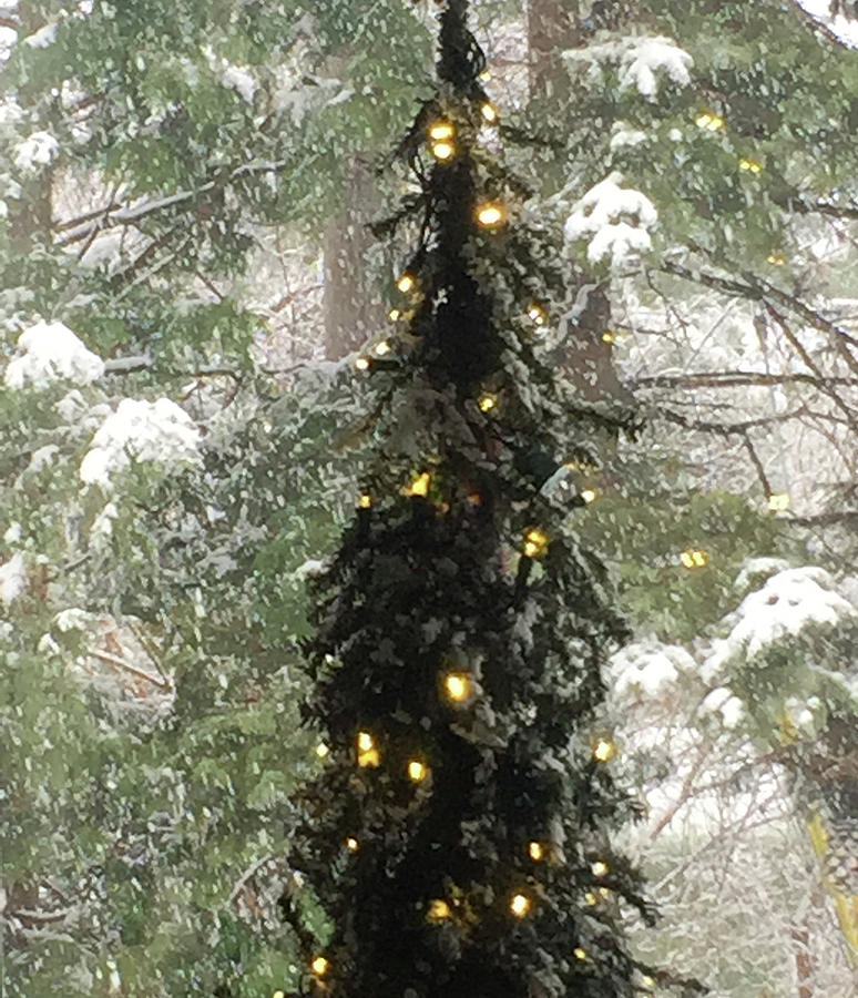 Snowy Christmas by Peg Toliver