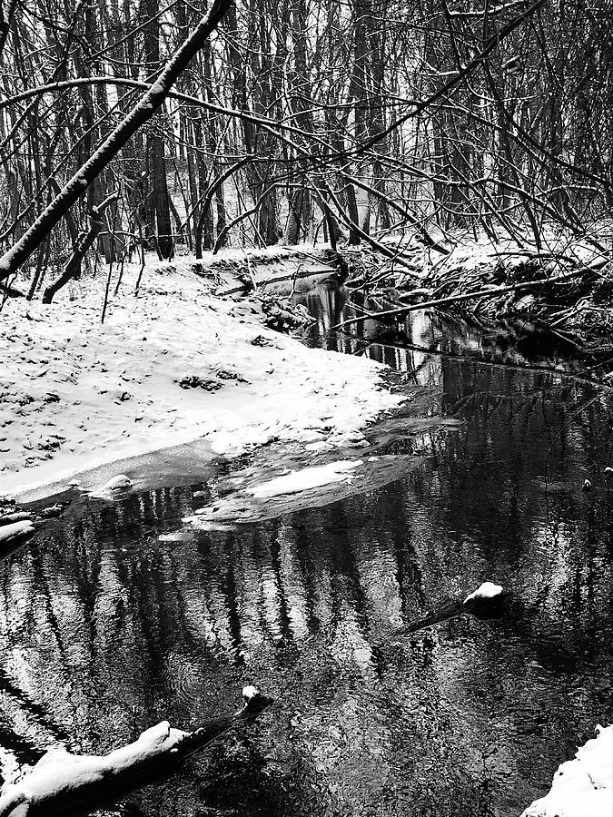 Snowy Creek 2 Photograph
