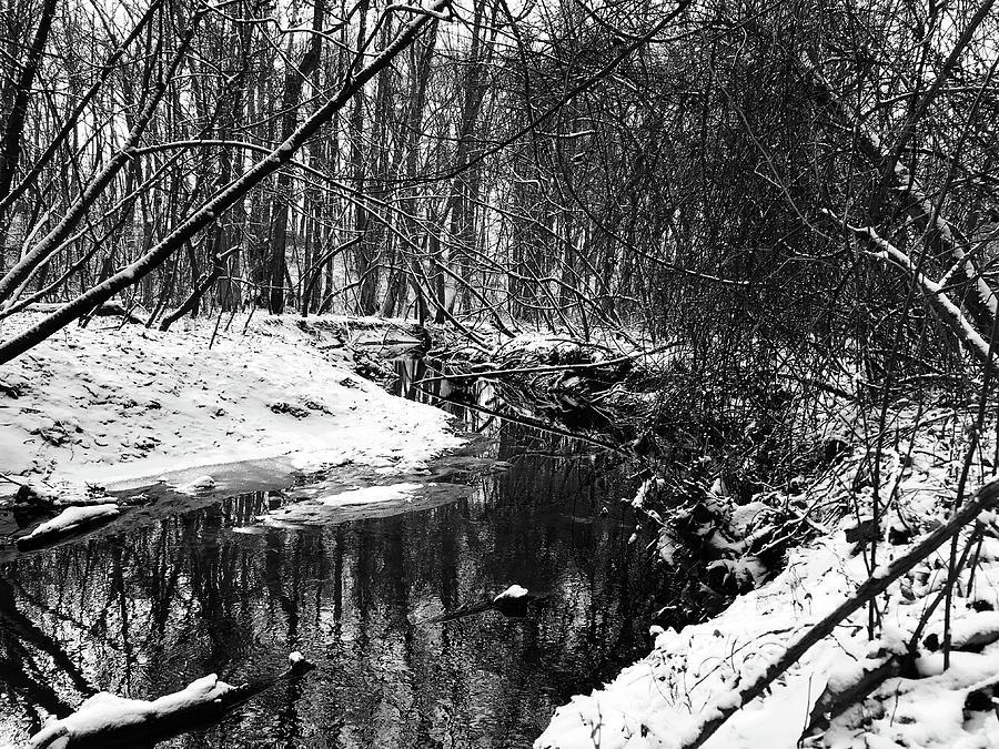 Snowy Creek 3 Photograph