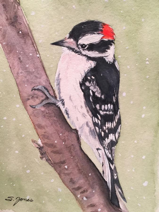 Snowy Downy by Sonja Jones