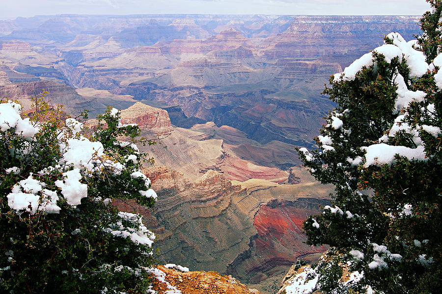 Grand Canyon National Park Photograph - Snowy Dropoff - Grand Canyon by Larry Ricker