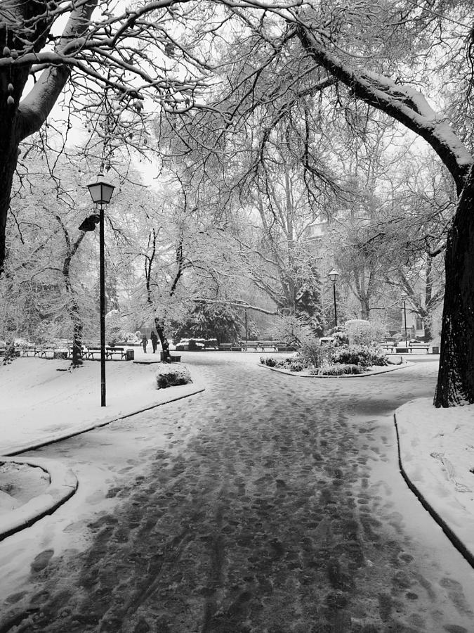 Sofia Photograph - Snowy Entrance To The Park by Rae Tucker