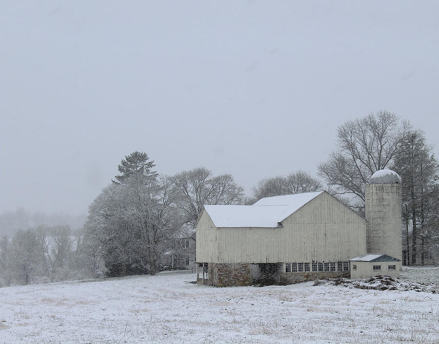 Winter White Farm by Melinda Blackman