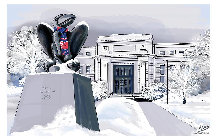 Snowy 'Hawk by Matt Hood