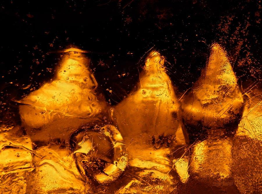 Snowy Photograph - Snowy Ice Bottles by Sami Tiainen