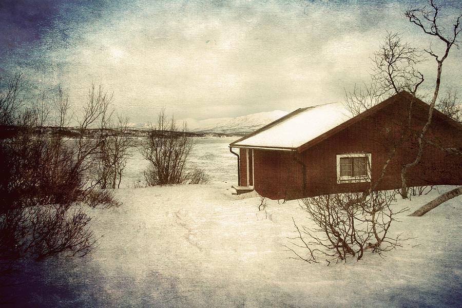 Snowy landscape by Vittorio Chiampan