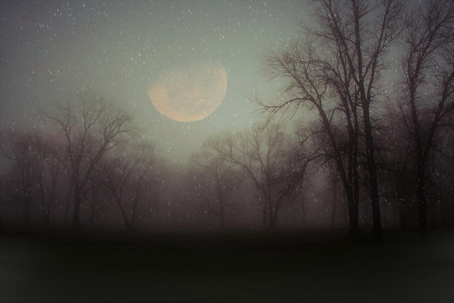 Moonlit Dreams by Inspired Arts