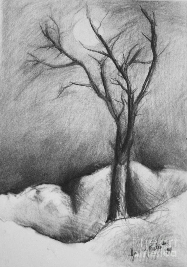 Moonlight Drawing - Snowy Moonlight by Jamey Balester