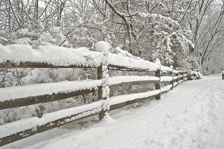 Beautiful Photograph - Snowy Morning by Michael Peychich