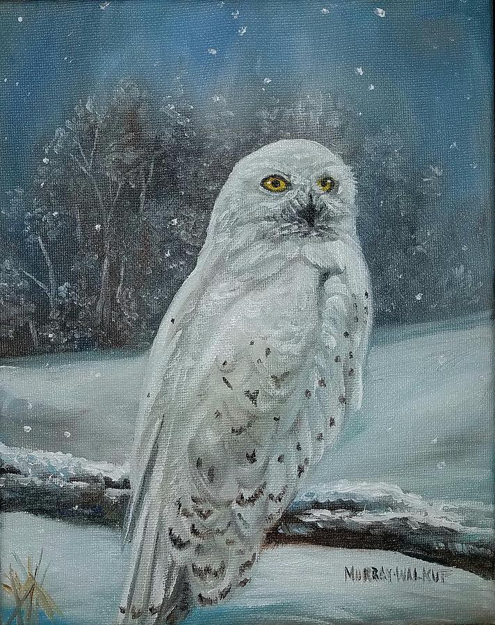 Snowy Owl #2 Painting by Misty Walkup