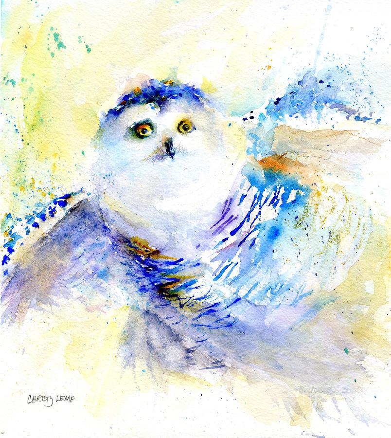 Snowy Owl Gaze by Christy Lemp