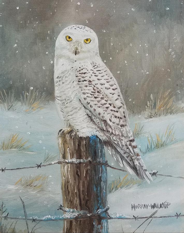 Snowy Owl Painting by Misty Walkup