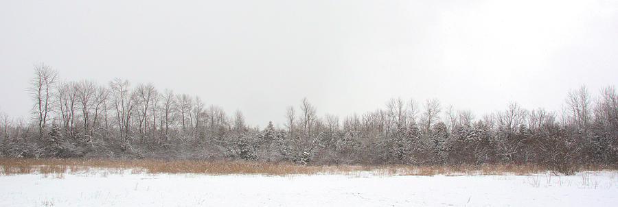 Snowy Pasture Panorama by Valerie Kirkwood