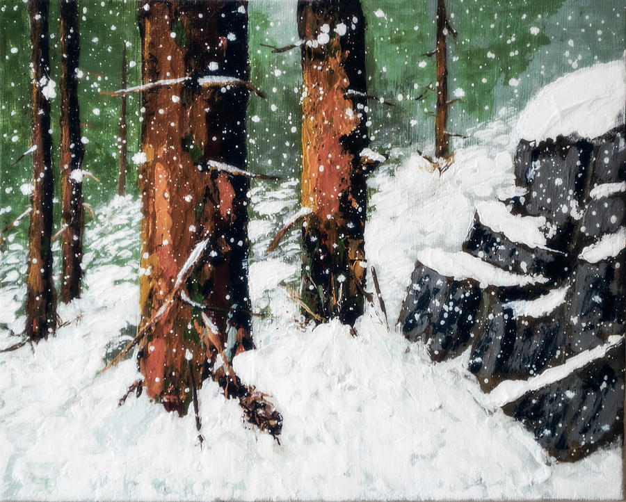 Snowy Redwood Dream by L J Oakes