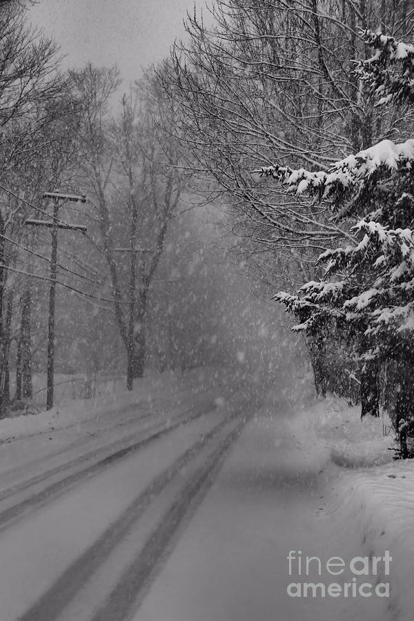 Snowy Road Photograph