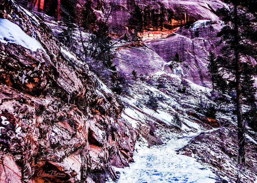 Snowy Sojourn by Adam Morsa