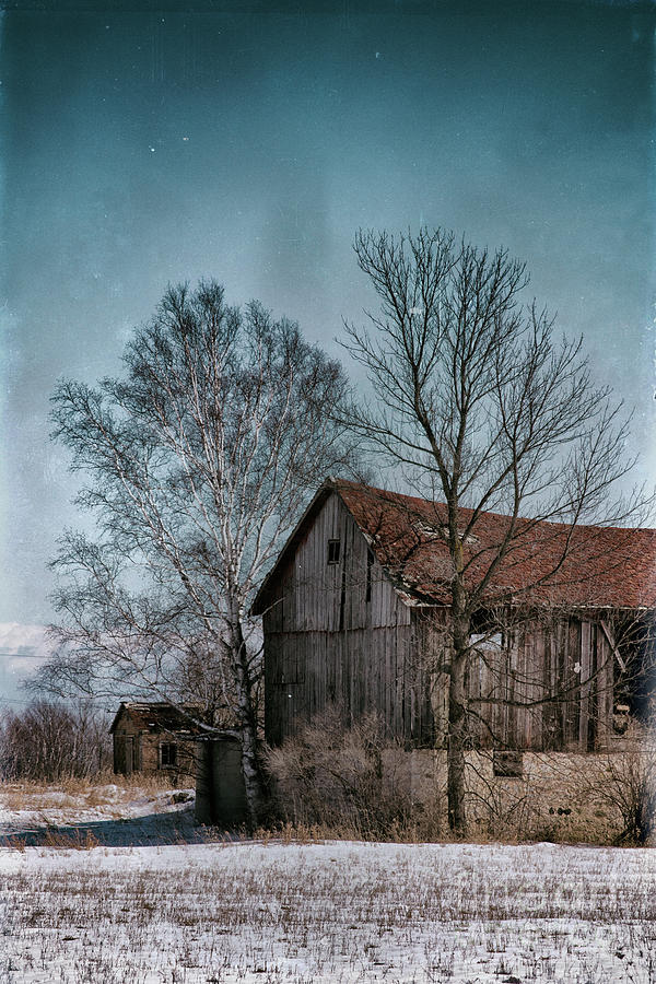 Snowy Spring Barn At Lost Lake by Ever-Curious Geek