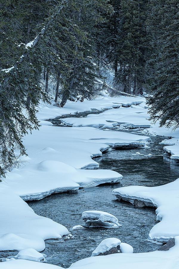 Snowy Stream Photograph