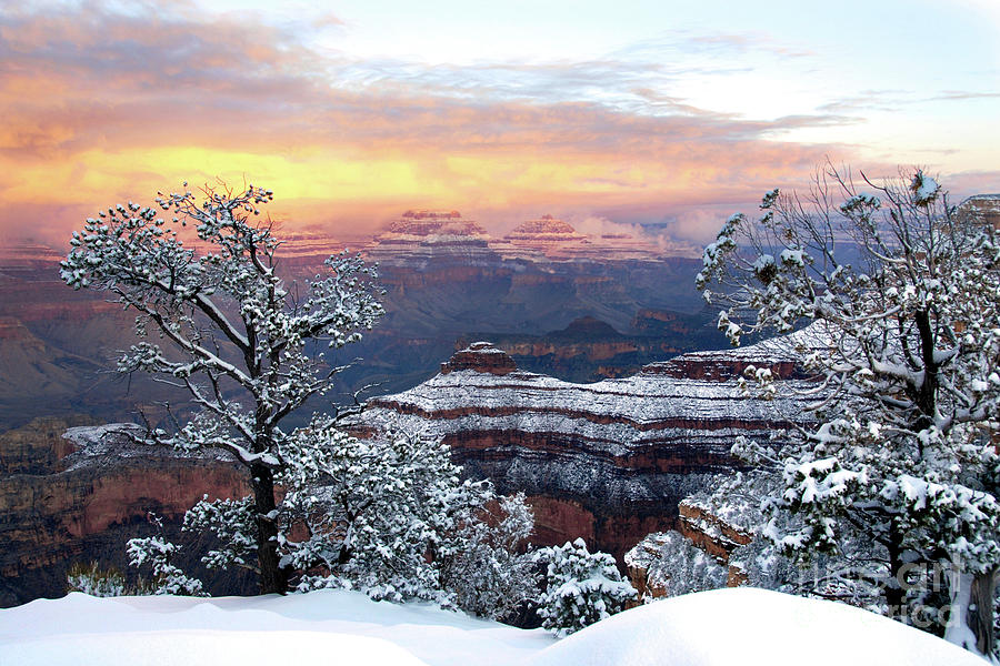 Snowy Sunrise Grand Canyon AZ by Joanne West