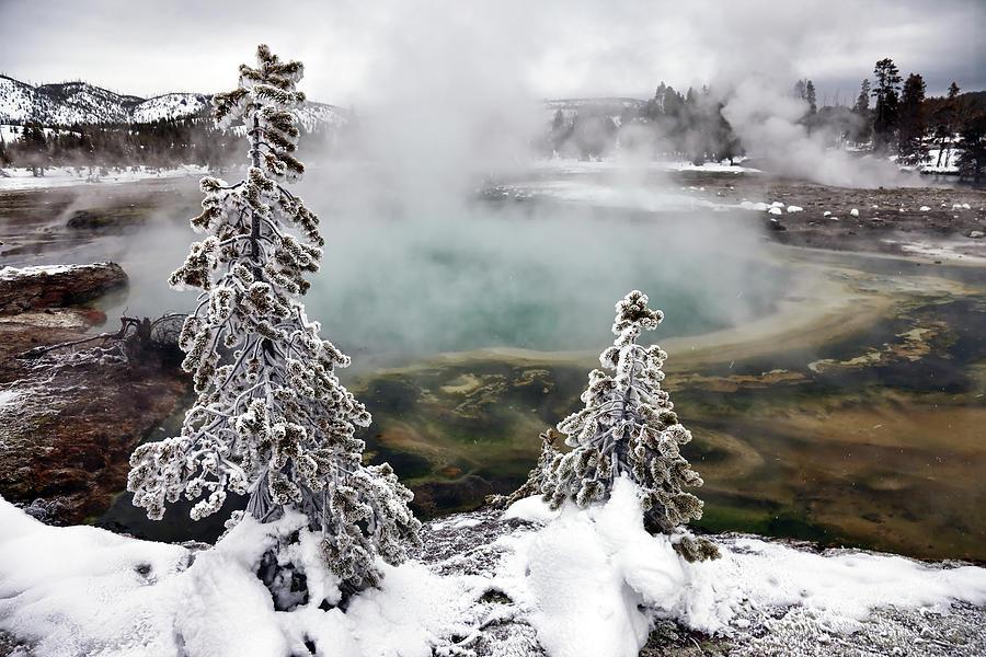 Horizontal Photograph - Snowy Yellowstone by Jason Maehl