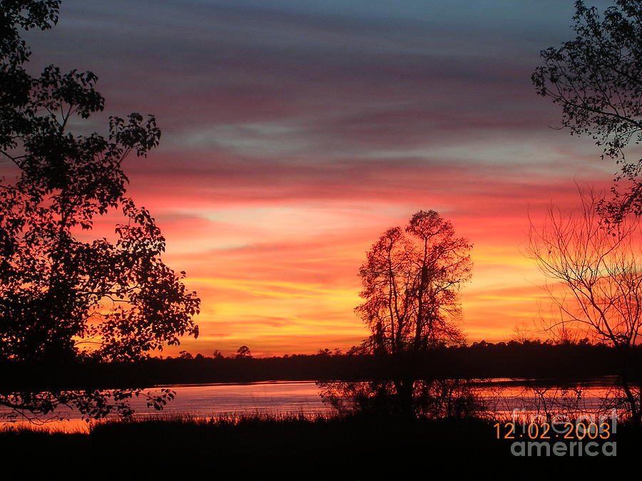 Sunset Photograph - So Red by Lee Ann Wunderler