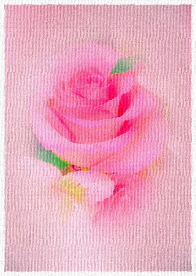 Pink Photograph - So Soft Rose by Diane Lindon Coy