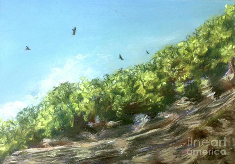 Soaring Above the North Rim by Susan Sarabasha